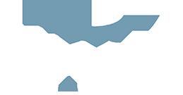 Rhino Films & Detailing Logo
